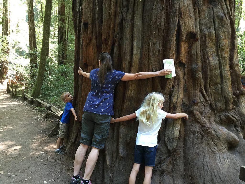 My little tree-huggers!
