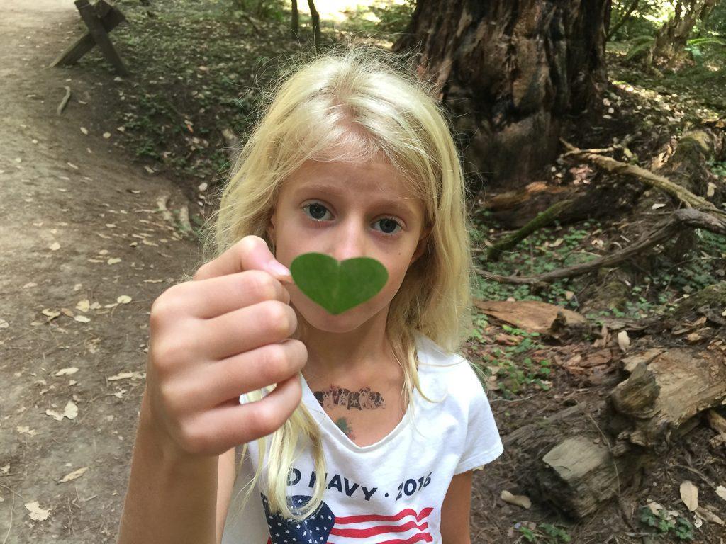 Adria's heart-shaped leaf
